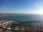 canaries 076
