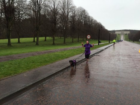 stormont purple ladies