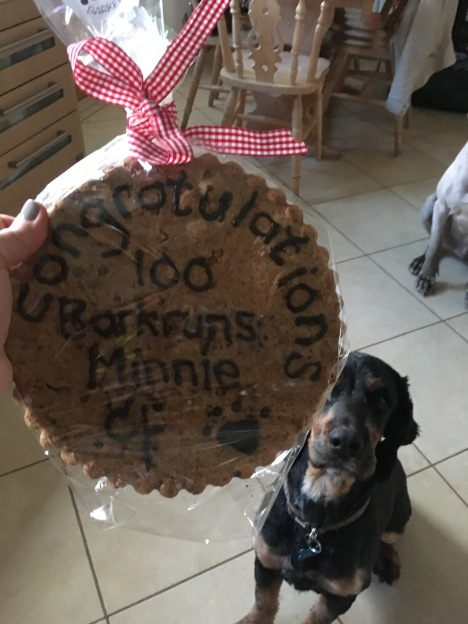 minnies 100th 008